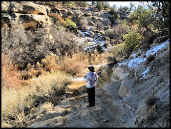 Lost Spring Canyon