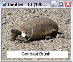 Contrast Brush Software