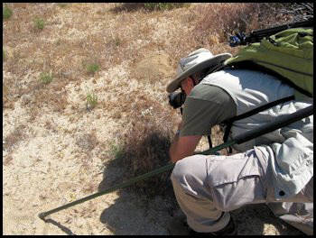 Jon photographing Horned Lizard